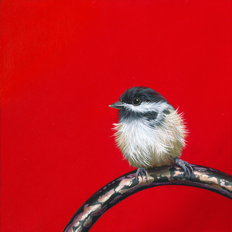 Little Chickadee II