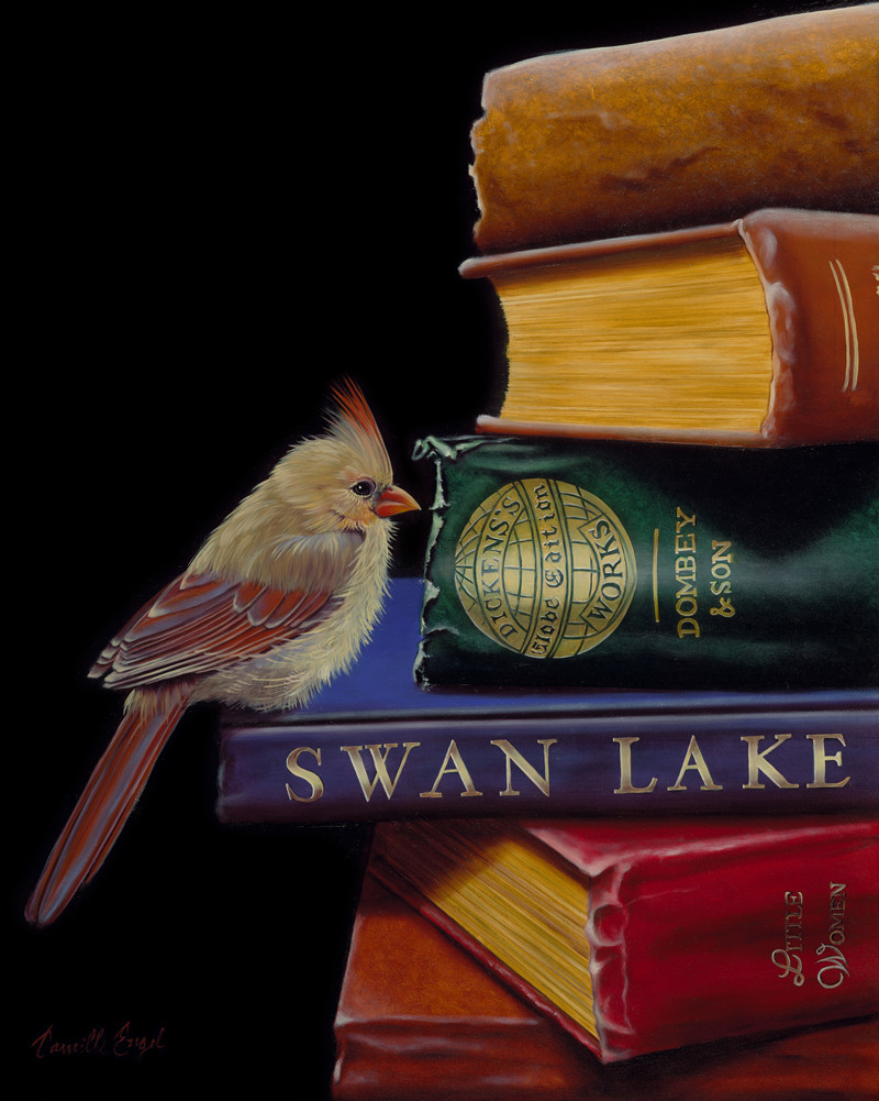 Feathers and Fiction  (Literary Roost Series)