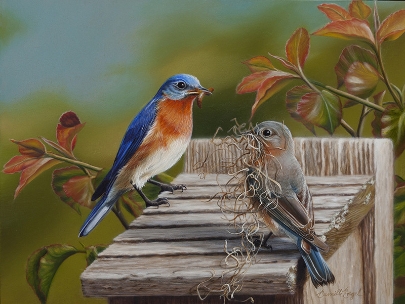 Cristy's Bluebirds