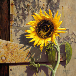 Sunflower at the Old Factory