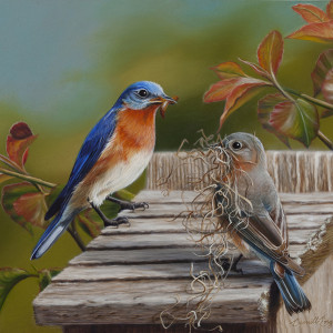 Cristy's Bluebirds